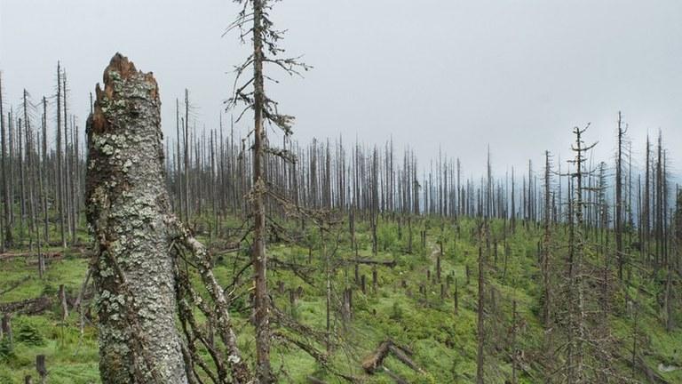 Katastrophenalarm - Der Kapitalismus zerstört die Einheit von Mensch und Natur! Was tun?