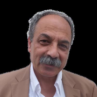 Seyhan Dasdemiroglu